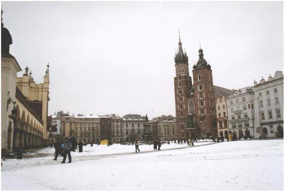 KRK snow_2