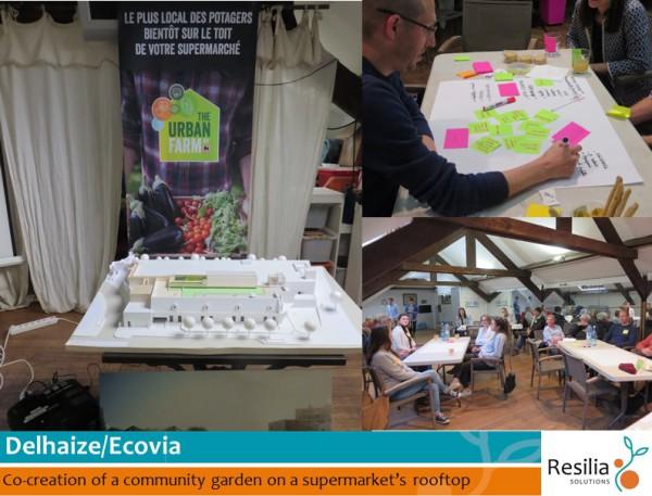 20160512_Portfolio_Delhaize Ecovia